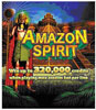 Amazon Spirit