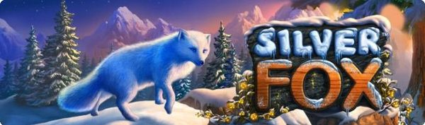 игровой автомат novomatic | игра Silver Fox