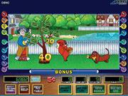 игровой автомат wms | бонус Rakin' It In