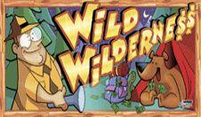игровой автомат wms | Wild Wilderness