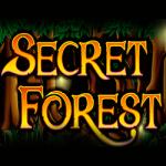 игровой автомат автомат secret forest